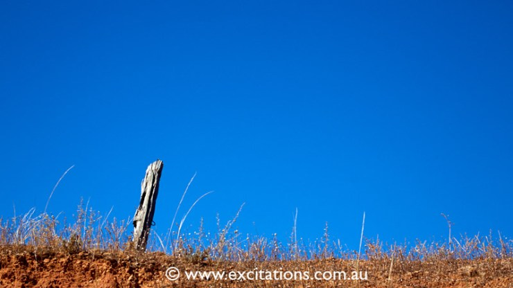 low angle fence post Spring Hill photography workshops. Photo courses around Mildura