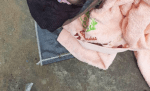 Police recover corpse of day old baby abandoned beside a hospital in Lagos (graphic photo)