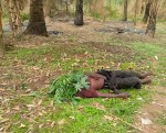 Suspected herdsmen attack Ebonyi communities, hack many to death (graphic photos)