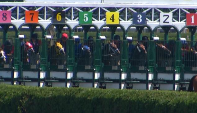 saratoga race course_261385