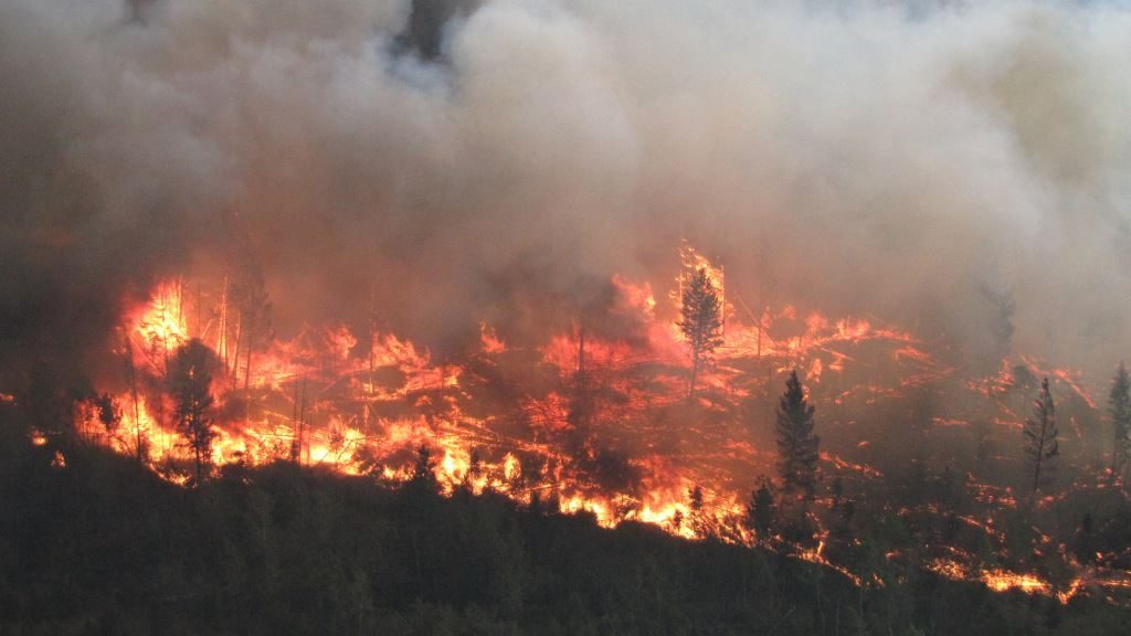 Image result for worst wildfire