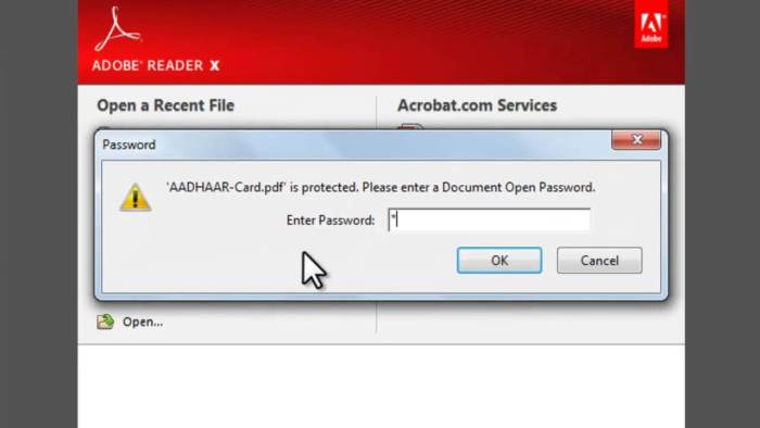 Aadhar Card Password