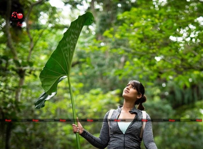 Ileana D'Cruz Images