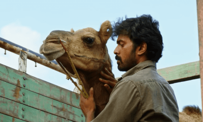 Bakrid Movie Download
