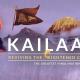 Kailaasa