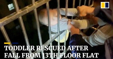 Two-year-old in China rescued by neighbours after falling from 13th-floor window