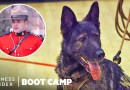 How Canadian Mounties Train With Dogs In Sub-Zero Temperatures | Boot Camp