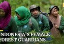 Indonesia's female forest guardians fight illegal poaching, logging and gender stereotypes