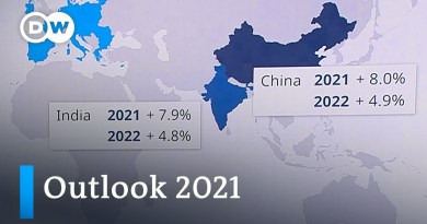OECD gives potentially optimistic outlook for 2021 | DW News