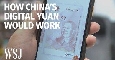 What China's New Digital Currency Tells Us About a Cashless Future | WSJ