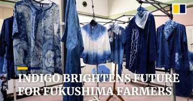 Indigo dyeing helps Fukushima farmers still living in shadow of 2011 nuclear disaster