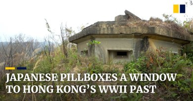 Neglected Japanese wartime military 'pillboxes' offer a window to Hong Kong's World War II past