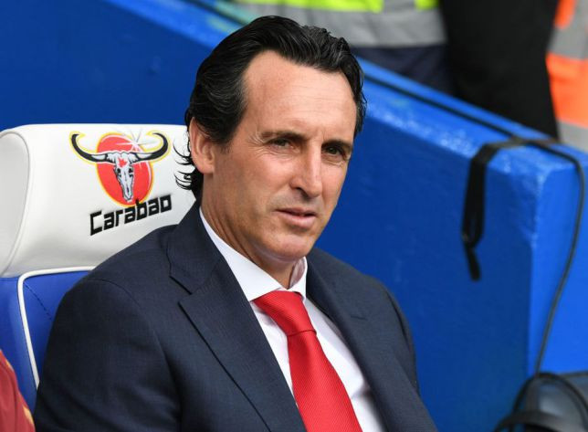 530ce5920 Unai Emery replaced Arsene Wenger at Arsenal over the summer (Picture   Getty)