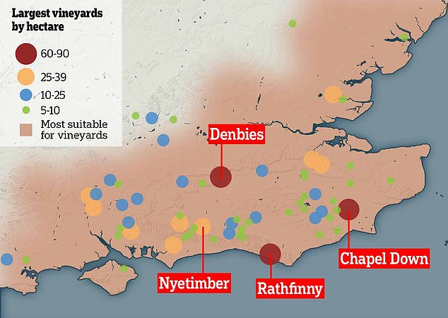 Map shows the largest vineyards by hectre across the south east of England (source: Journal od Land Use Science)