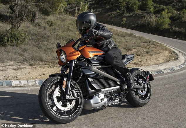 The bike, called LiveWire, will go on sale next year - although Milwaukee-based Harley still hasn't said how much it will cost, or long it can go on a single charge.