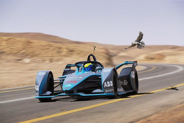 Felipe Massa attempted to outrun a peregrine falcon in a Formula E car in Saudi Arabia