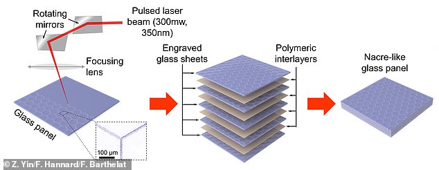 The team used a pulsed ultraviolet laser beam to etch square or hexagonal patterns onto borosilicate glass sheets measuring just 220 microns thick to mimic the material's design. The sheets were then laminated with thin layers of plastic and separated into individual tiles