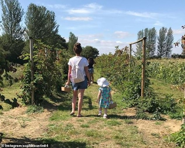 Family time:On Thursday, Sophie proved to be back to full health after her sepsis ordeal as she took her daughter Willow, 19 months, out strawberry picking