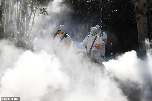 Officials told the state news agency that Chongqing workers might have squirted too much disinfectant to curb the coronavirus epidemic, killing the wildlife by accident. The picture shows sanitation workers disinfect a residential compound in Bozhou on February 18