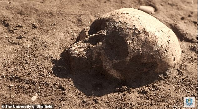 It is estimated, that some 200 million people lost their lives to this horrific plague. Dr. Hugh Willmott from the University of Sheffield's Department of Archaeology, has been working on the excavation site in Lincolnshire since 2011