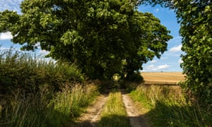 A track near East Kilham in Yorkshire, often painted by David Hockney