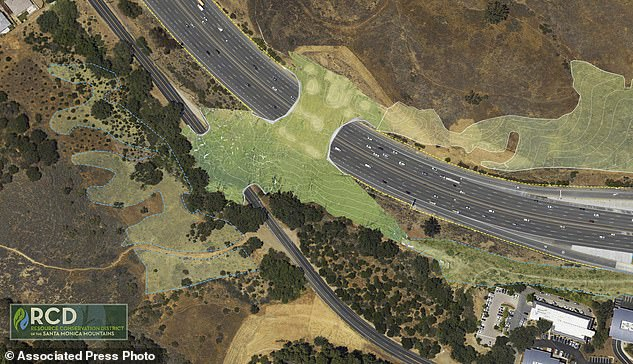 An artist's rendering of the wildlife crossing over the 101 Freeway in Agoura Hills. While such passes, both bridges and tunnels, are not uncommon in Europe and Canada, this will be the largest and the first in a major metropolitan area