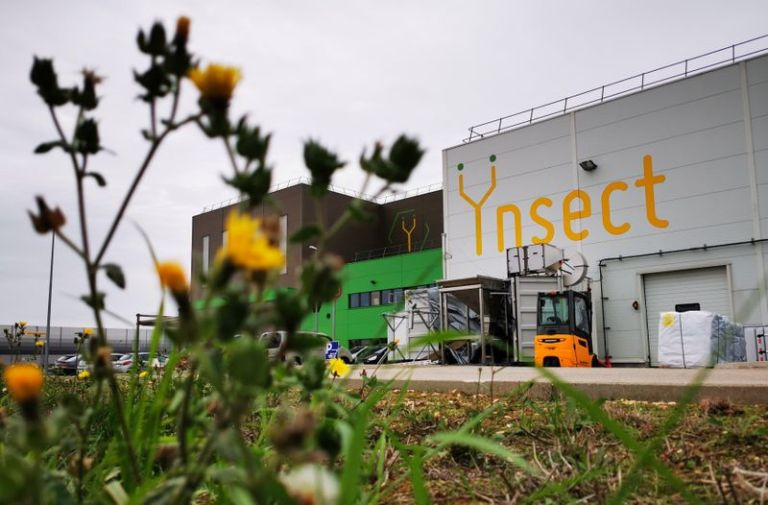 French start-up Ynsect to build world's biggest bug farm