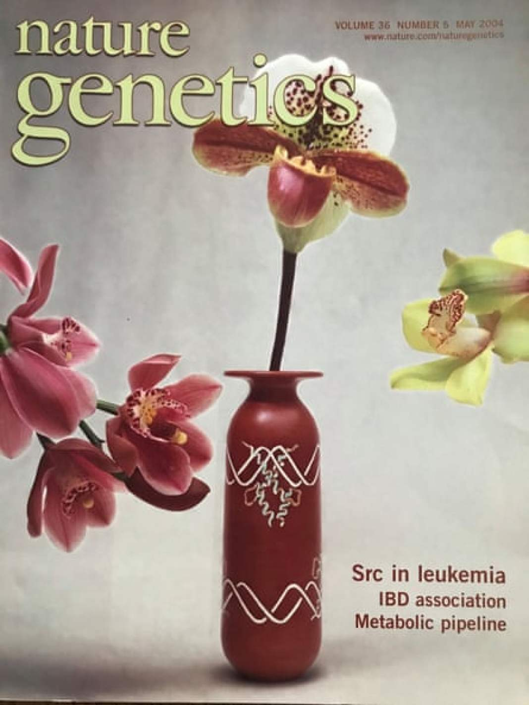 One of Larissa Wakefield's pots on the cover of Nature Genetics