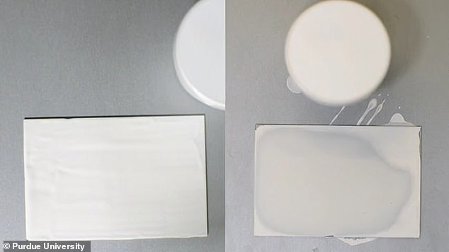 A new super-white paint developed at Purdue university (right) reflects 95.5 percent of sunlight and remains cooler than the surrounding temperature both at night and when the sun is at its peak
