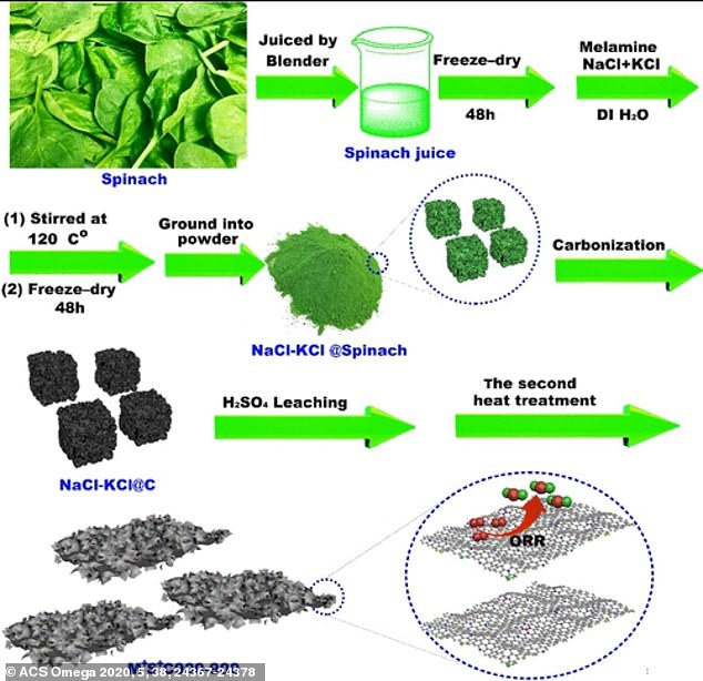 The transformation began by washing, juicing and freeze-drying the spinach, manually grinding it into a fine powder with a mortar and pestle, and 'doping' the resulting carbon nanosheet with extra nitrogen to improve its performance