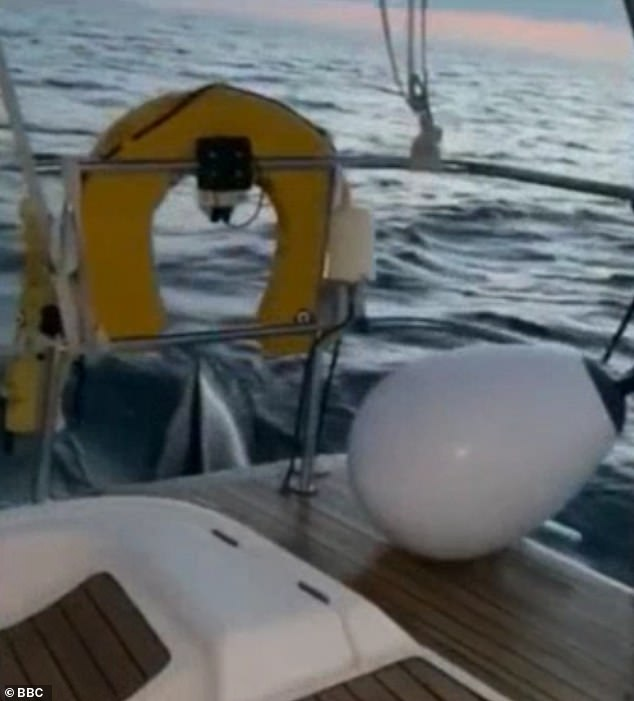 During the 45-minute attack a 1.5sq ft bite had been taken out of the yacht's rudder