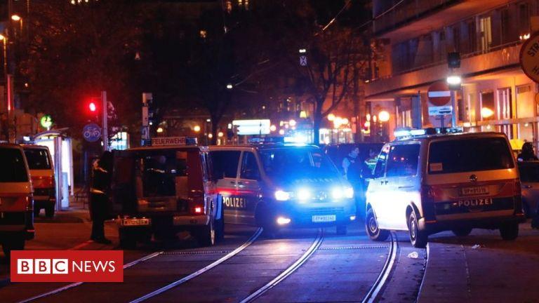Casualties in Vienna 'terrorist' shooting