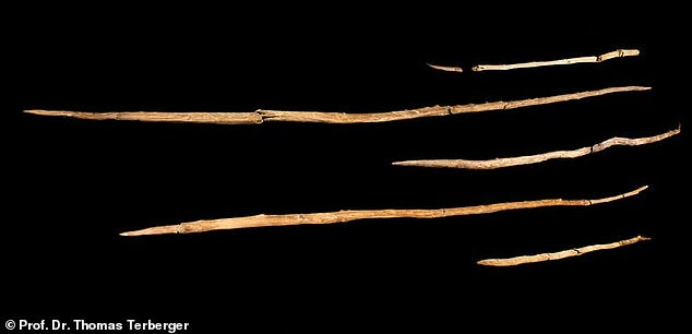 Neanderthalensis were skilled big game hunters, using spears to take down deer, ibex, elk, bison, even rhinos and mammoths. It defies belief to think they would have hesitated to use these weapons if their families and lands were threatened. Archaeology suggests such conflicts were commonplace