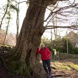 Judy Dowling, contributor to For The Love of Trees
