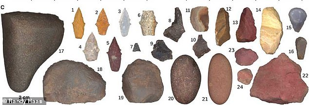 It had long been assumed that — among early human hunter-gatherer societies — it was the men who did the former while the women undertook the latter task. Pictured, the tools unearthed from the burial pit, among which areprojectile points (Nos. 1–7), unmodified flakes (8–10), retouched flakes (11–13), a possible backed knife (14), thumbnail scrapers (15 & 16), scrapers/choppers (17–19), burnishing stones (17, 20 & 21), and red ochre nodules (22–24)