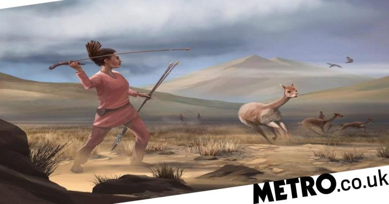 9,000-year-old remains of female hunter-gatherer shows men didn't do all the work