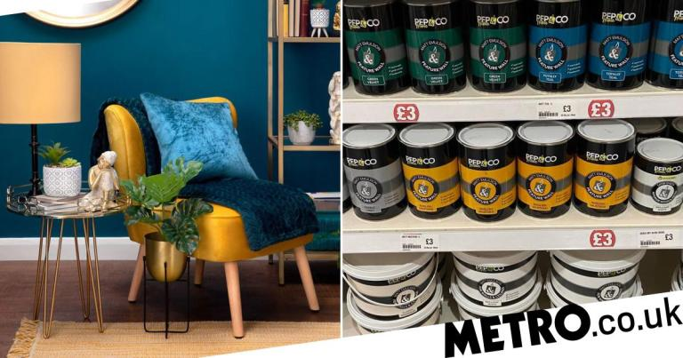 Poundland launches a new paint range just in time for lockdown DIY projects