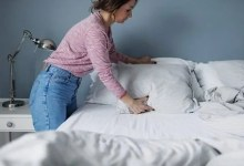 Dogs Help Detect Bed Bugs