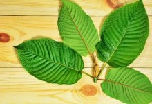 Kratom Dosage Tips To Improve Your Experience