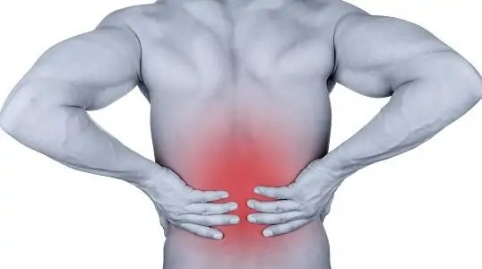 How CBD is useful for Disc and back pain