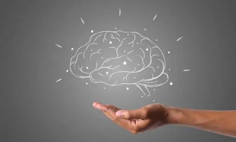 Everything to know about Modafinil newscase.com