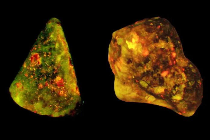 The team found DNA (red) and an enzyme (green) on the surface of human gallstones (yellow)