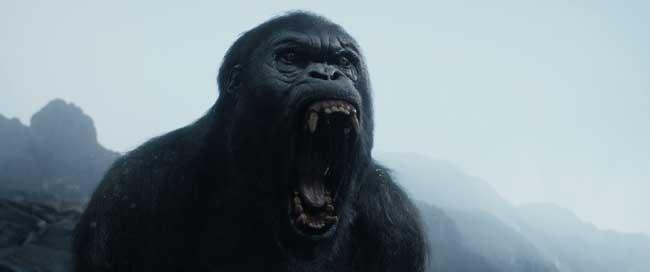 The Legend of Tarzan footage