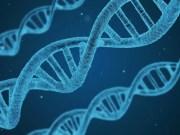 DNA Verbindung