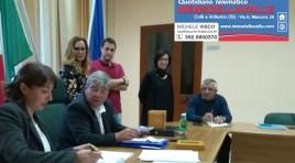 """Sessano del Molise: """"I gatti sono stati uccisi da alcuni cani randagi già inviati in canile"""". Il sindaco Pino Venditti fa chiarezza sui fatti degli ultimi giorni."""