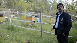 Parco Nazionale d'Abruzzo Lazio e Molise: il nuovo direttore è il 54enne Luciano Sammarone.
