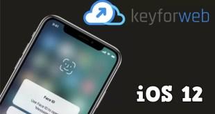 iOS 12 dispensa indizi sui nuovi iPad tra notch e Face ID