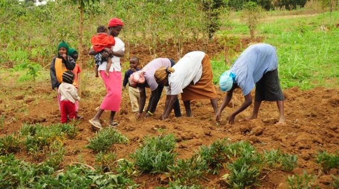 Resultado de imagen de resources agriculture
