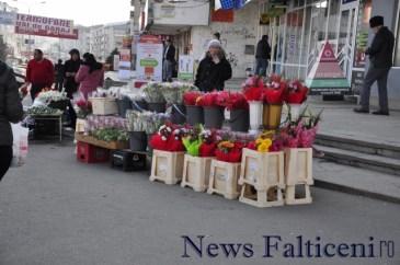 Falticeni-_DSC6727