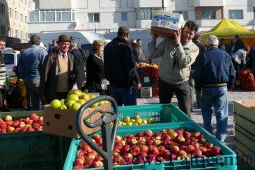 Falticeni-comert cu fructe 11
